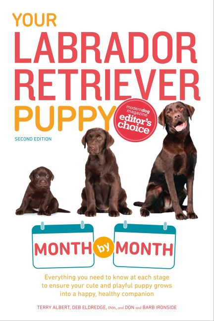 Paperback cover of Your Labrador Retriever Puppy Month by Month, 2nd Edition