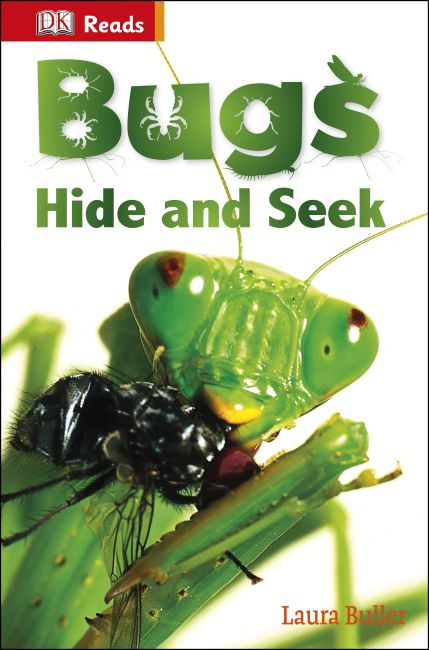 eBook cover of Bugs Hide and Seek