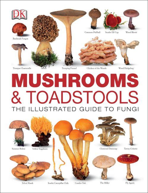 Hardback cover of Mushrooms & Toadstools