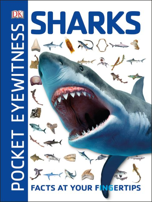 Paperback cover of Pocket Eyewitness Sharks