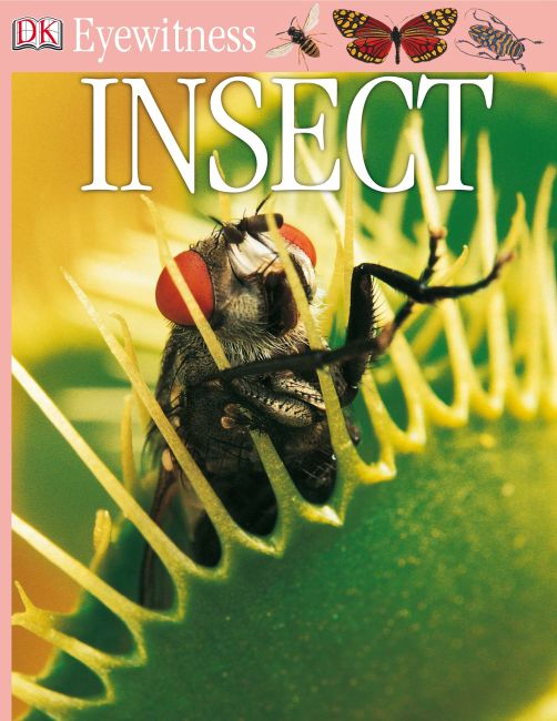 eBook cover of DK Eyewitness Books: Insect