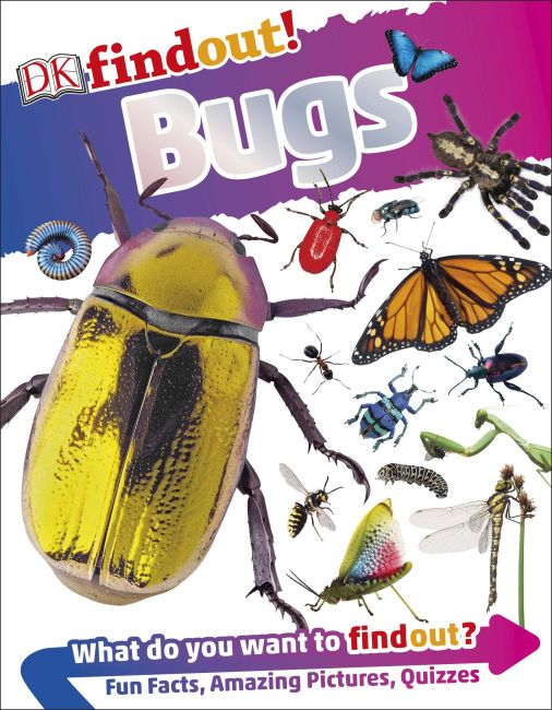 Paperback cover of DKfindout! Bugs