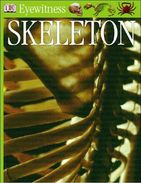 eBook cover of Eyewitness GUides: Skeleton