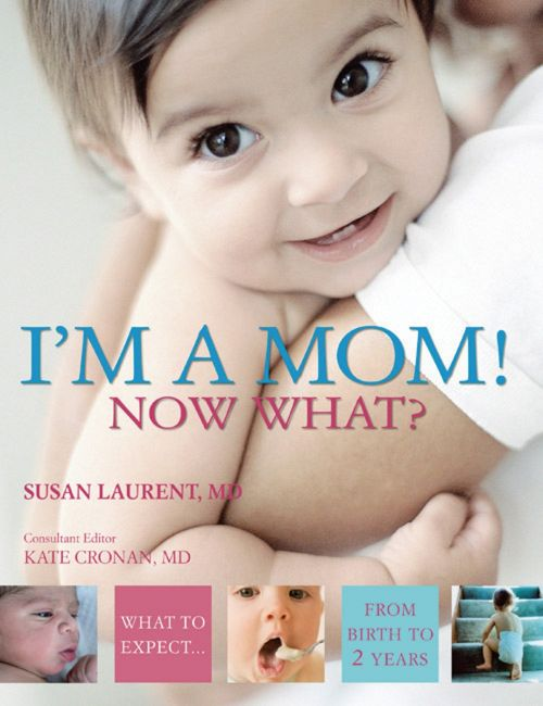 eBook cover of I'm a Mom!  Now What?