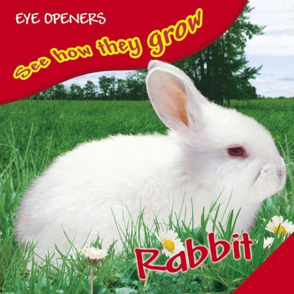 eBook cover of Bunny