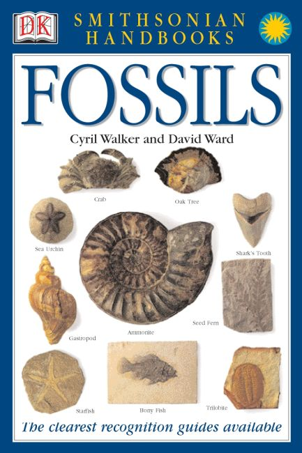 Paperback cover of Handbooks: Fossils