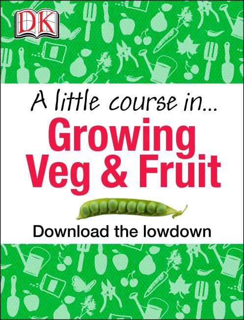 eBook cover of A Little Course in Growing Veg & Fruit