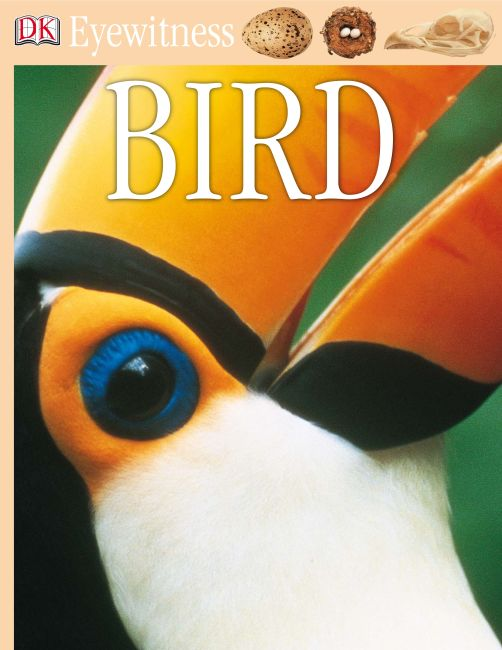eBook cover of Bird