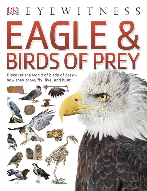 Paperback cover of Eagle & Birds of Prey