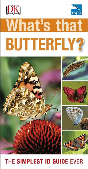 eBook cover of RSPB What's that Butterfly?