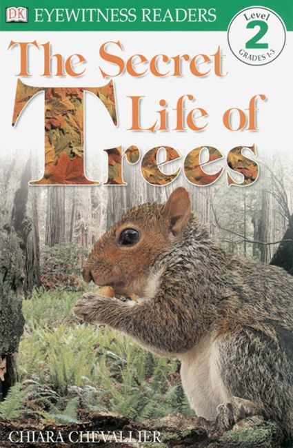 Paperback cover of DK Readers L2: The Secret Life of Trees