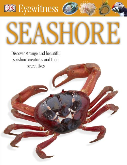 eBook cover of Seashore