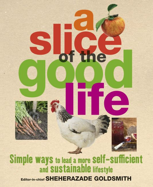 eBook cover of A Slice of the Good Life