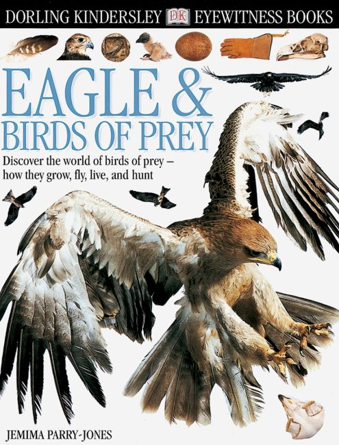 eBook cover of DK Eyewitness Books: Eagle & Birds of Prey