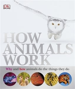 eBook cover of How Animals Work