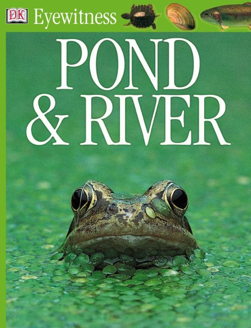 eBook cover of Pond and River