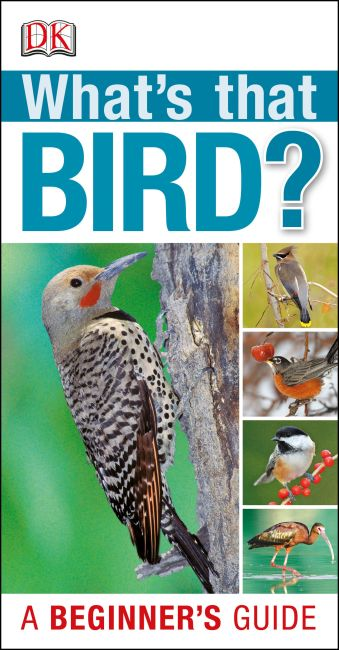 Paperback cover of What's that Bird?