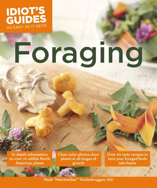 Paperback cover of Foraging