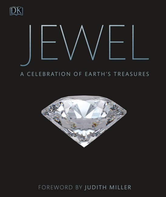Hardback cover of Jewel