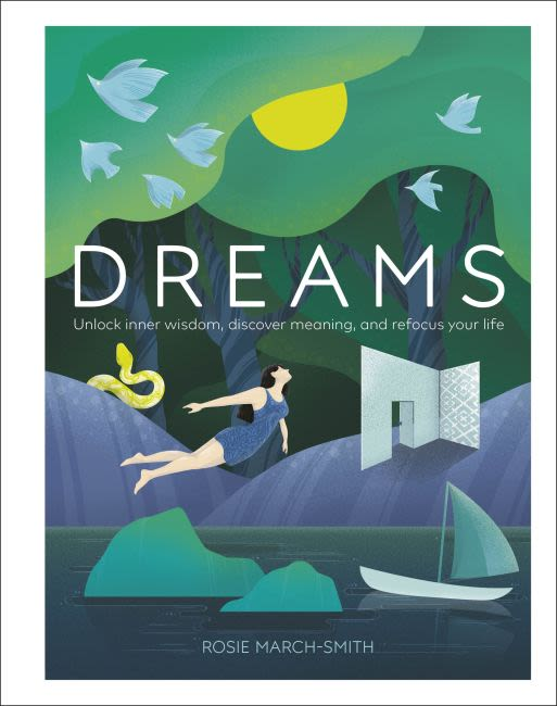 Hardback cover of Dreams