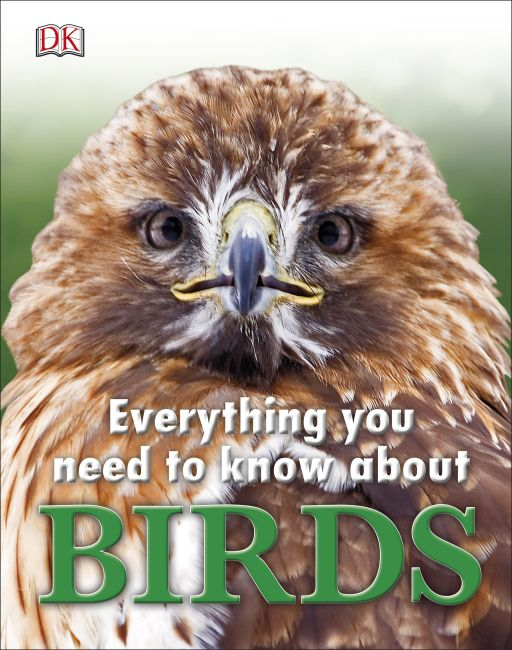 Hardback cover of Everything You Need to Know About Birds