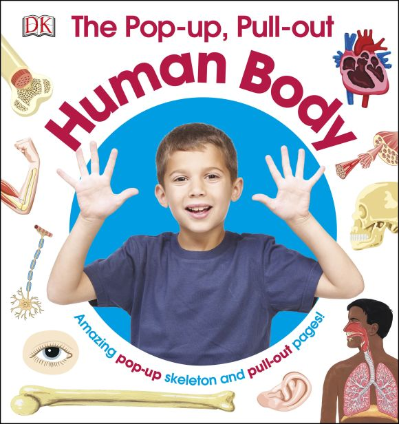 Hardback cover of The Pop-up, Pull-out Human Body