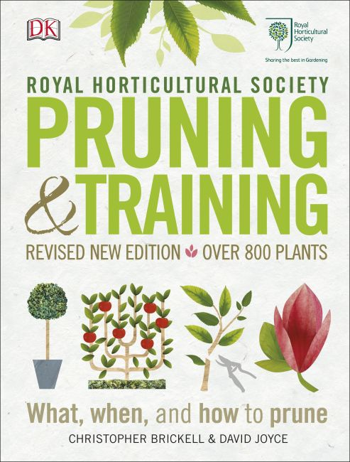 Hardback cover of RHS Pruning and Training