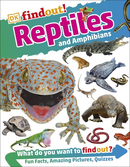 Flexibound cover of DKfindout! Reptiles and Amphibians