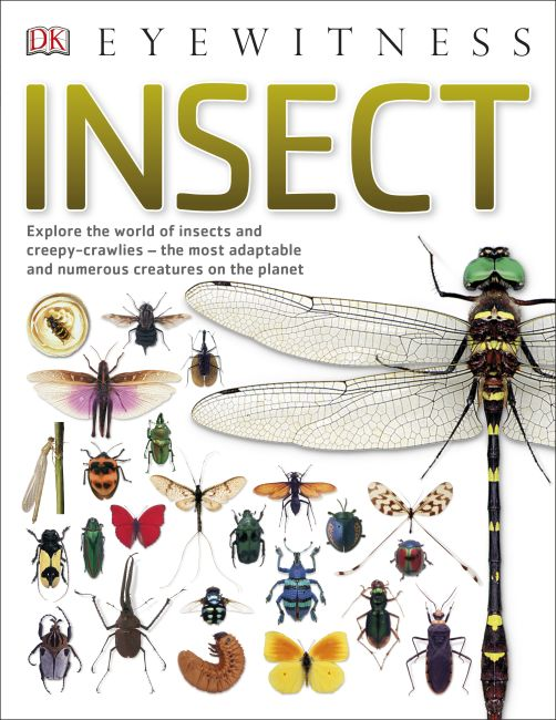 Paperback cover of Insect