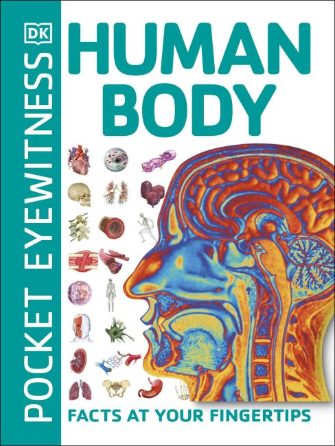 Paperback cover of Pocket Eyewitness Human Body