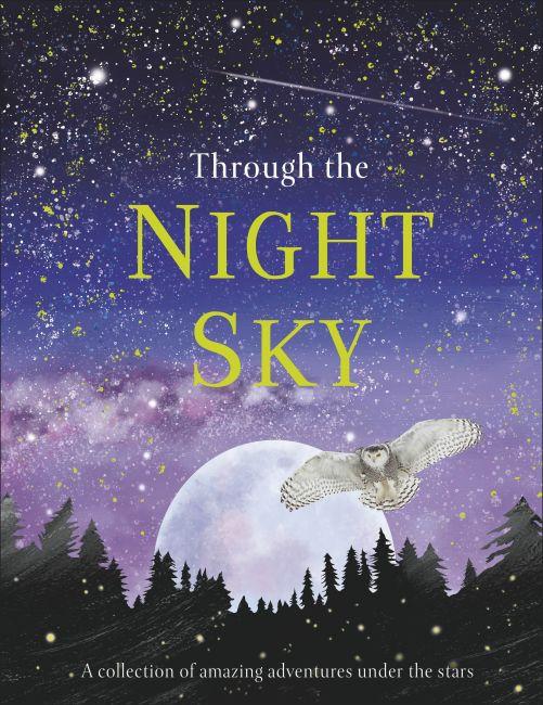 Hardback cover of Through the Night Sky