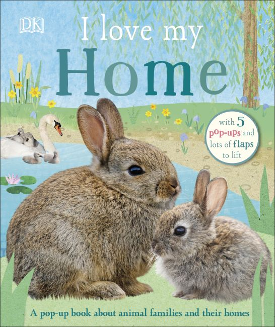 Board book cover of I Love My Home