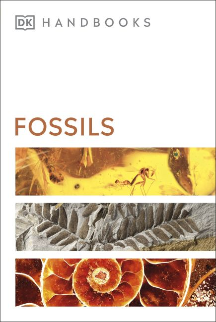Flexibound cover of Fossils