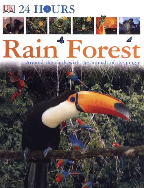 eBook cover of DK 24 Hours: Rain Forest
