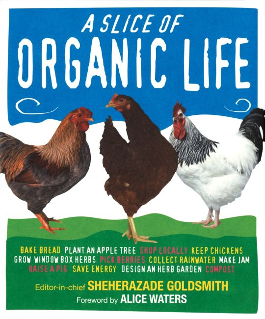 eBook cover of Slice of Organic Life