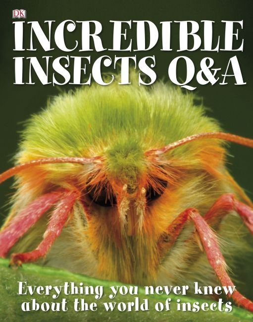 eBook cover of Incredible Insects Q & A
