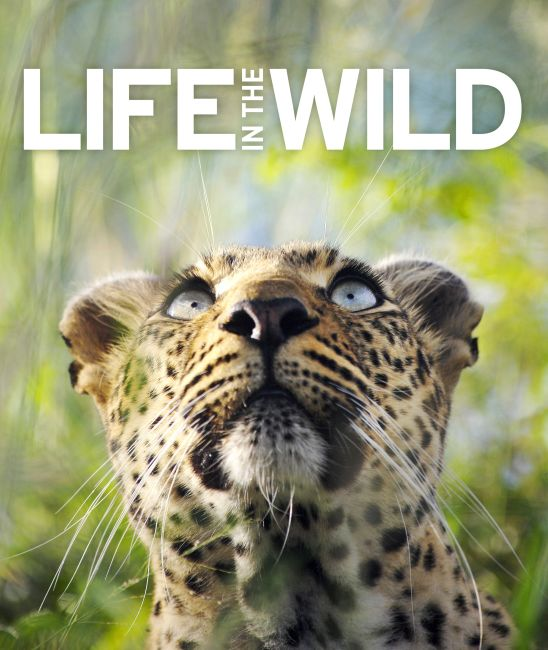 eBook cover of Life In The Wild