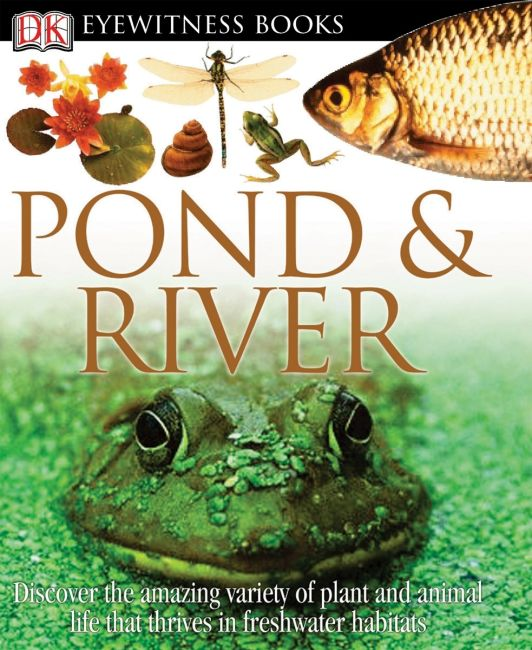 eBook cover of DK Eyewitness Books: Pond and River