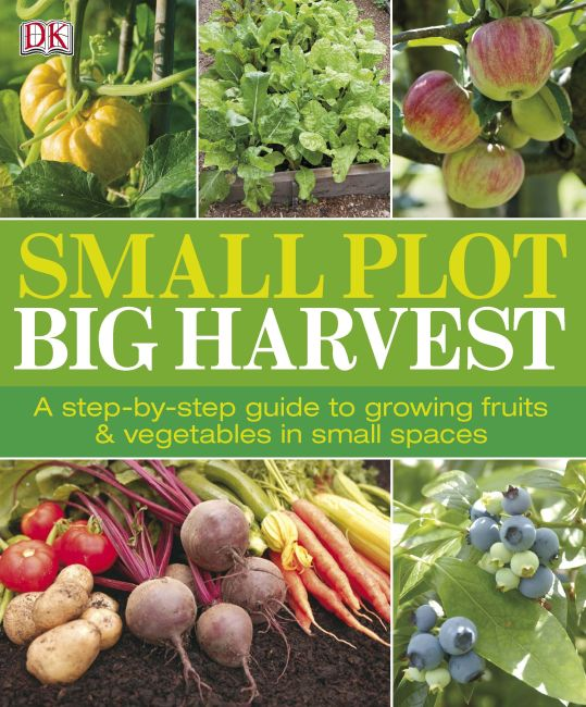Paperback cover of Small Plot, Big Harvest