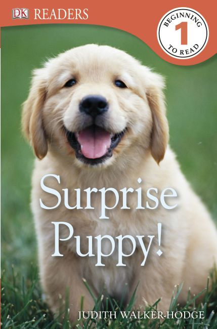 Paperback cover of DK Readers L1: Surprise Puppy