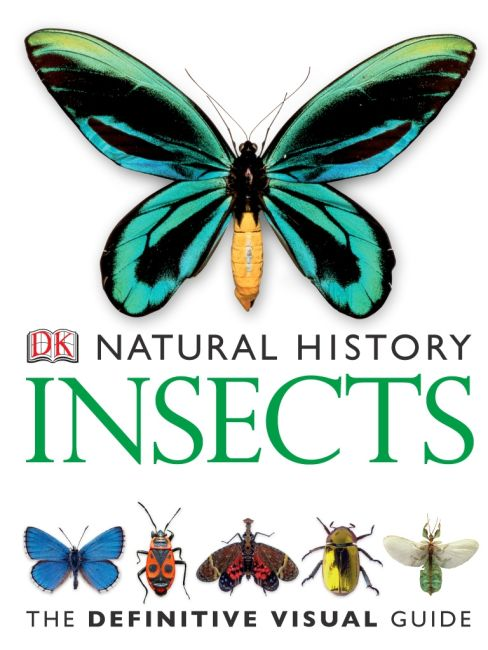 eBook cover of DK Natural History Insects