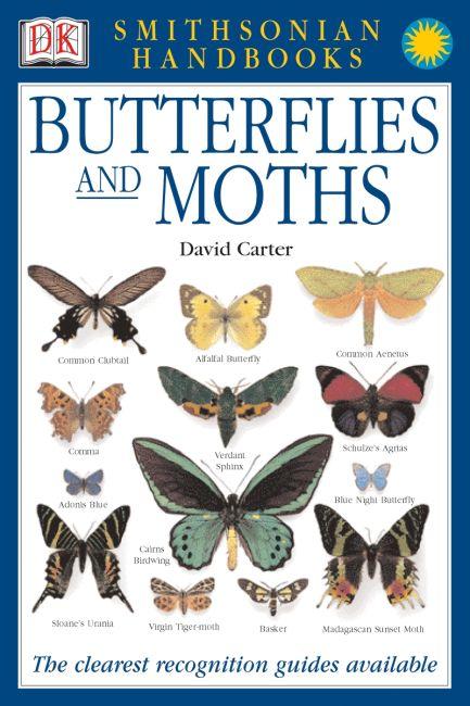 Hardback cover of Handbooks: Butterflies & Moths