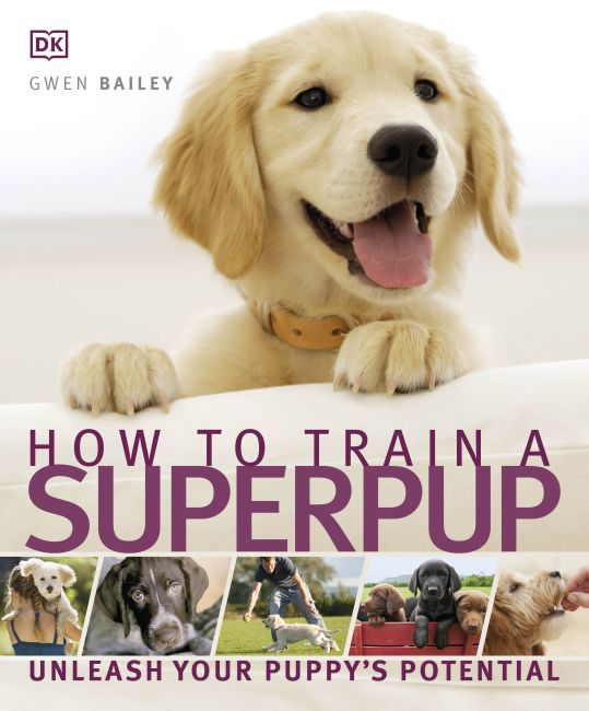 Paperback cover of How to Train a Superpup