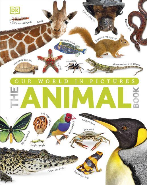 Hardback cover of The Animal Book
