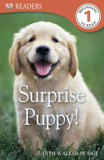 eBook cover of Surprise Puppy!