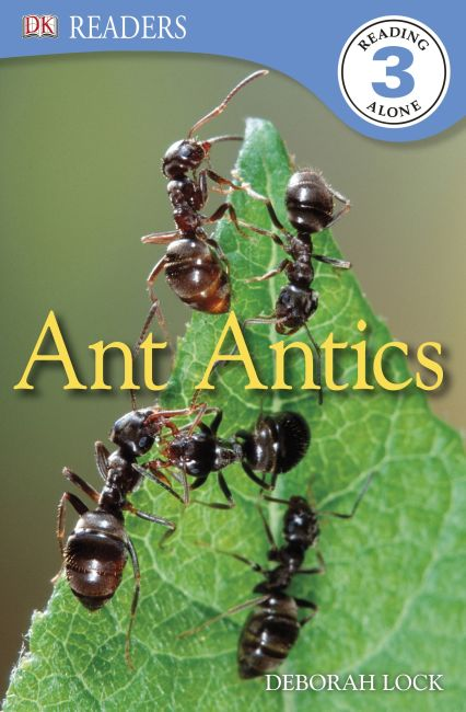 eBook cover of DK Readers L3: Ant Antics