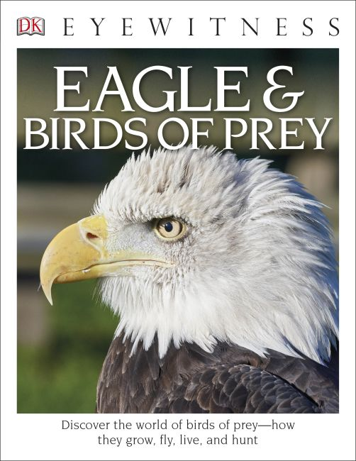 Paperback cover of DK Eyewitness Books: Eagle and Birds of Prey