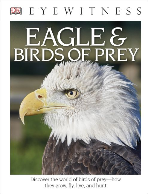 Hardback cover of DK Eyewitness Books: Eagle and Birds of Prey