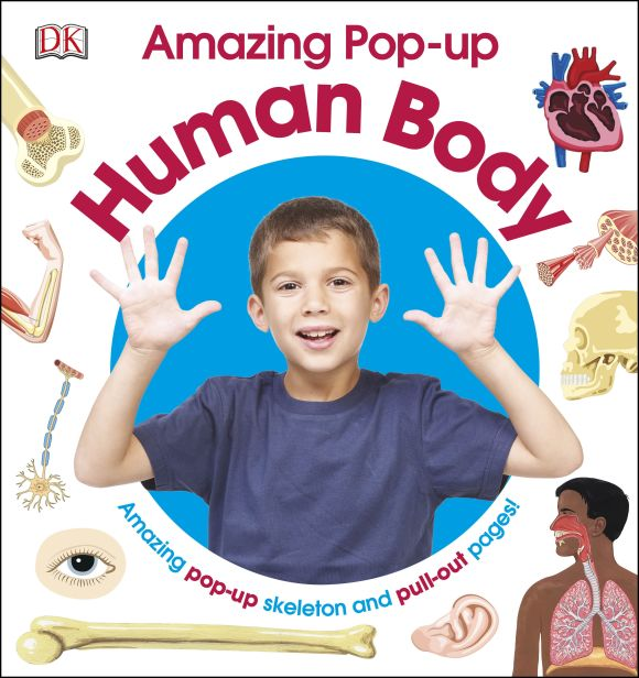 Hardback cover of Amazing Pop-up Human Body