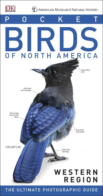 Paperback cover of American Museum of Natural History: Pocket Birds of North America, Western Region
